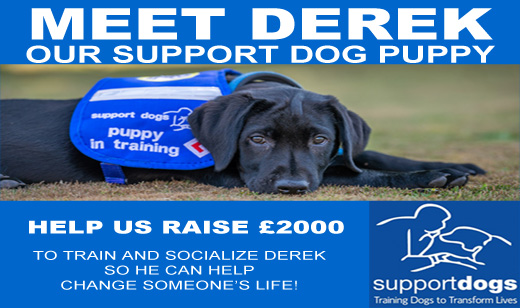 CTS support dog -derek